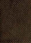 Hawaii Sue Forest Brown Green Chenille Upholstery Fabric