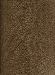Omega Camel Solid Light Brown Upholstery Fabric