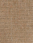 Beige Tan Coral Weaved Pattern Upholstery Fabric