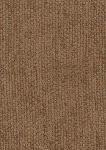 Golden Brown Chenille Upholstery Fabric