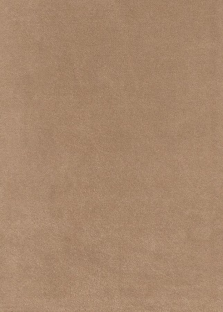 Ultra Echo Light Brown Micro Suede Upholstery