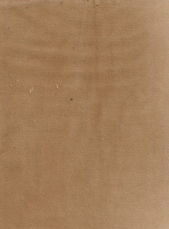 Bella Honey Velvet Upholstery Fabric