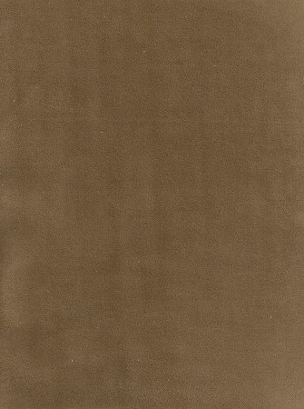 Bella Light Brown Velvet Upholstery Fabric
